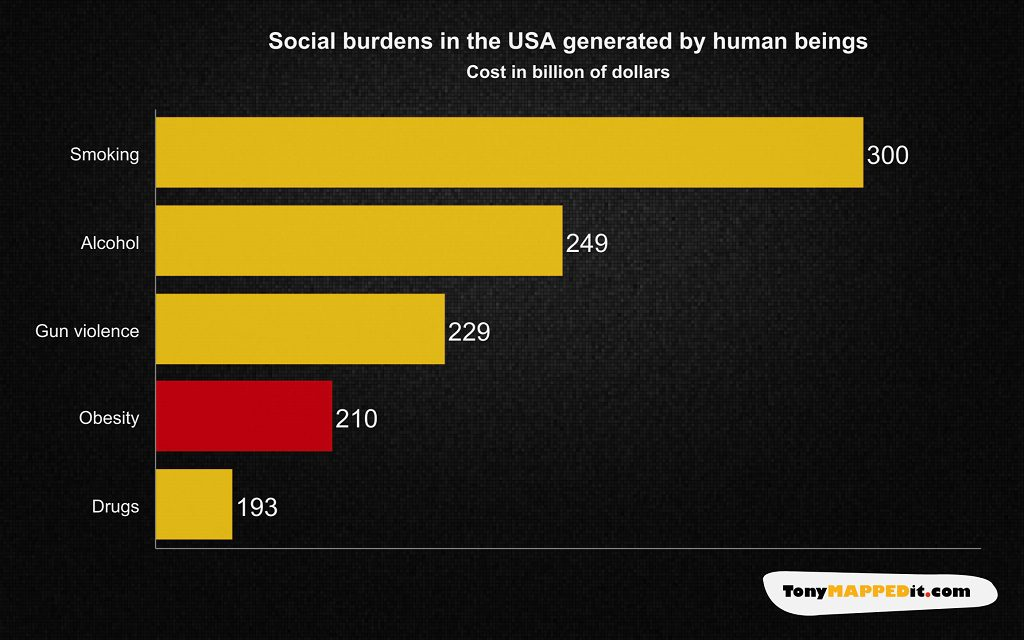 This Chart Shows The Cost Of Social Burdens In The USA Generated By Human Beings